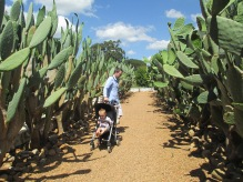 Papa und Leo im Kaktusgarten